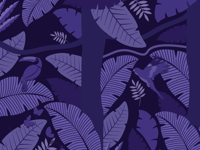 Wings of the World: Jungle Print
