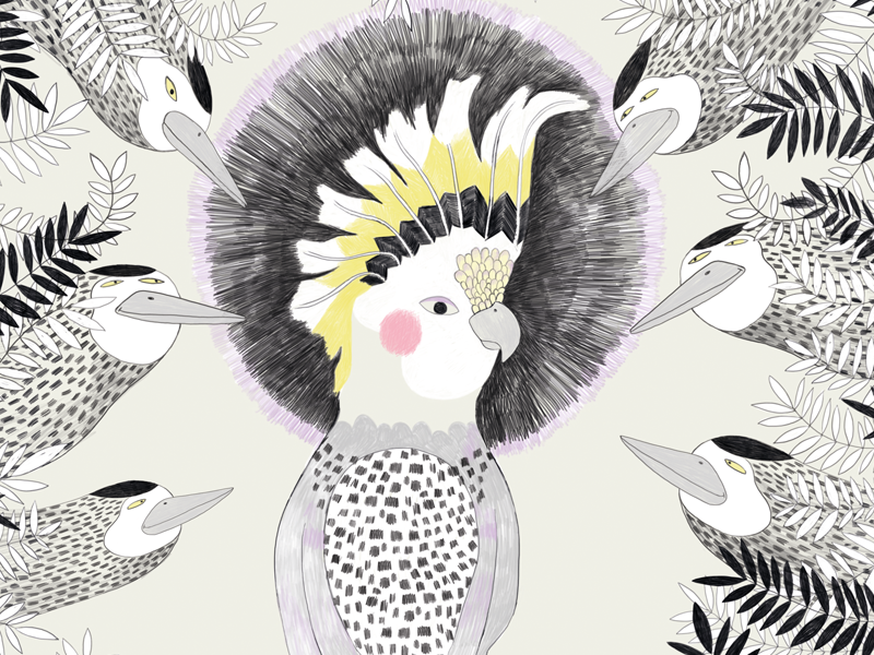 Cockatoo bird cockatoo illustration