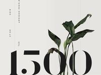 Thanks 1500+