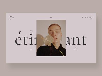 Shop logo elegant interface interface design branding design store shop fashion clean typography ui ux web