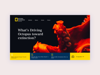 National Geographic - New Concept