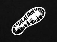 """""""Jalalinn"""" or """"Footcity"""""""