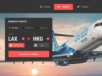 Flight search bar