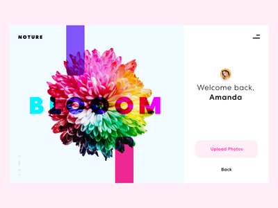 Photo Sharing App welcome screen actions user profile avatar action welcome ui simple pastel log in flower elegant colors colorful