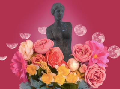 Venus de Milo Collage