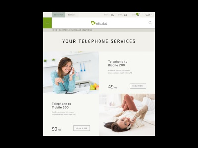 Etisalat - Telephone Services solutions packages modern page devices mobile services telephone digital design product design ios android user interface interface website web design ux ui app