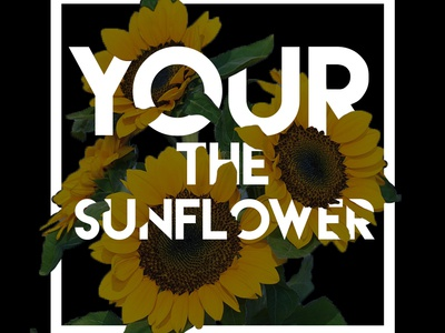 Your The Sunflower