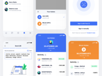 Lisk Mobile Application wallet crypto wallet cryptocurrency bitcoin design ios iphone application app apps flat mobile clean ux simple icon icons ui interface