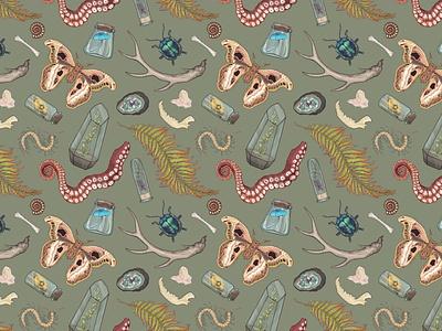 Curio Print digital illustration surface pattern design plants bugs beetles moth scientific illustration surface pattern repeat repeat pattern repeat print print design pattern curio