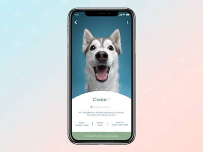 User Profile - Dog Adoption