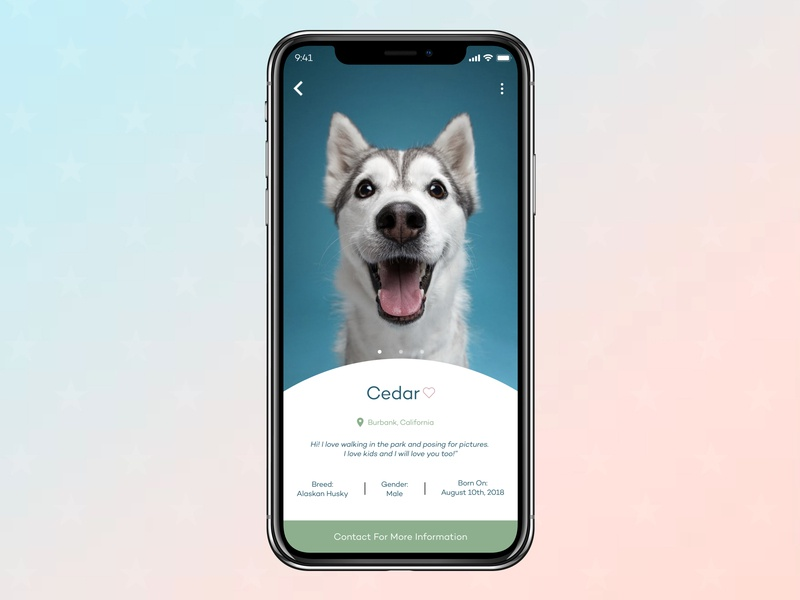 User Profile - Dog Adoption ux mobile ui design mobile design mobile ui mobile design daily ui challenge daily ui daily ui 006 dailyui dogs alaskan husky husky dog adoption 006