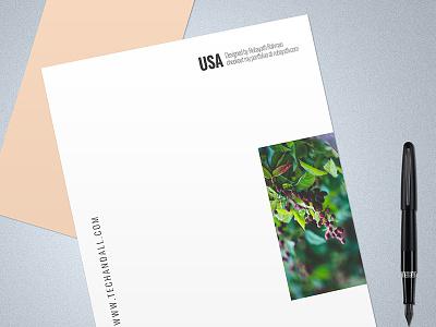 Letter & Envelop Mock up designs showoff presentation showcase photo branding free logo freebie mockup psd