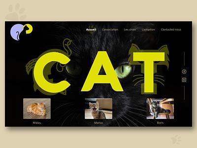 Cat webdesign yellow website design design ux ui typogaphy website webdesign dribbble creative figmadesign web black