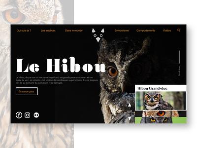 Owl home website bird nocturnal website webdesign web ux ui typography adobexd adobe graphic design dribbble design creative