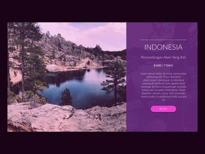 Travel Website Card