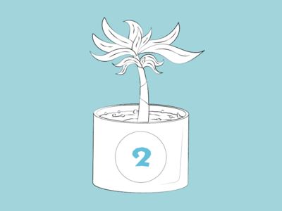 Thing 2 pot tree succulent thing 2 office plant