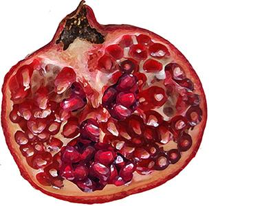 Pomegranate fruit pomegranate button club