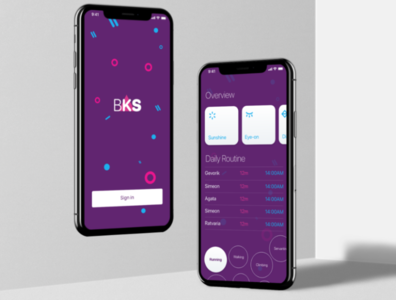BKS App Design Interface