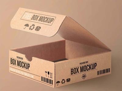 Free Carton Packaging Box Mockup