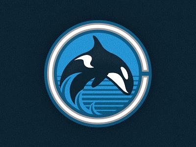 Canucks logo branding illustration