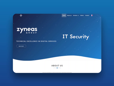 Website for Zyneas