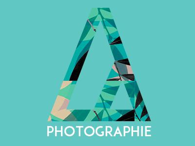 New Logo 2014 logo logotype brand typo font photo portfolio identity