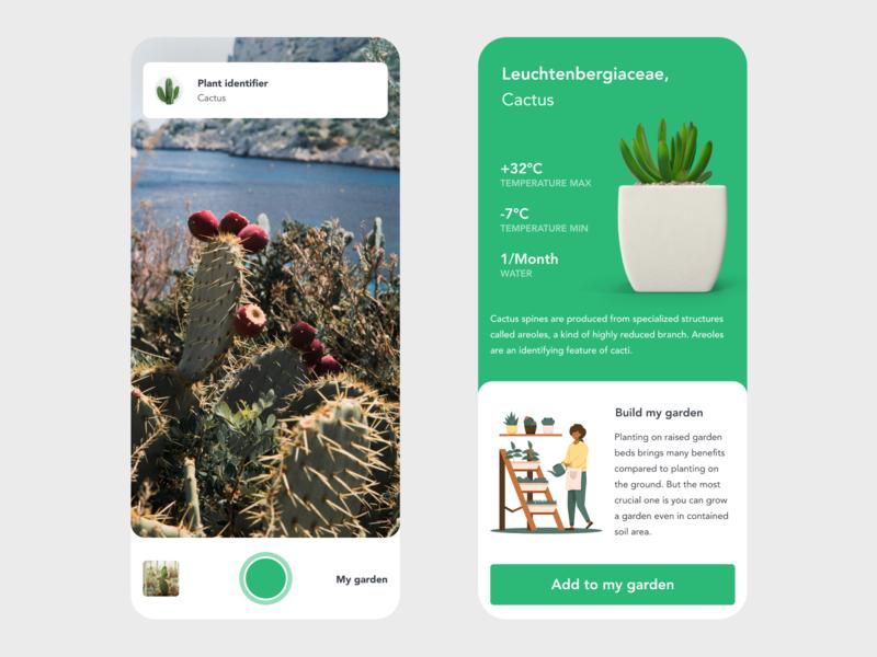 Plant Identifier nature cactus garden ecologic ecology plants plant camera app camera green ui app design xd design minimal beautiful prototype clean adobe xd app