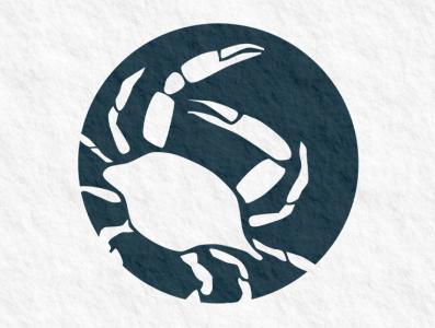 McCarley International Design illustration branding101 bold jillstclaircreative logodesign jillstclair logo design branding
