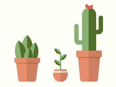First flat design - Potted plants illustration flat design potted plants stayhome staymotivated lockdowninspiration succulent cactus pots plants