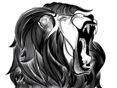 Line Lion illustrator illustration ink vector animal lion