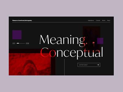 Museum of emotional photography interaction design ux ui headline webite web photography modernism concept museum art