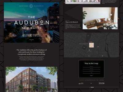 The Audubon Splash Page real estate splash page web