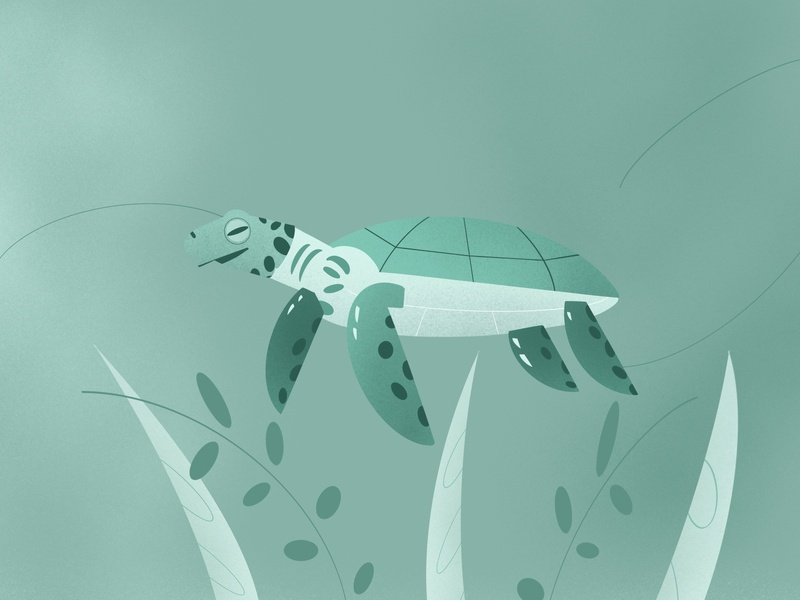 Sea Turtle🐢 tosca green plants seaturtle turtle dribbble illustrator procreate design illustration