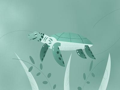 Sea Turtle🐢 tosca green plants seaturtle turtle dribbble illustrator procreate design illustration