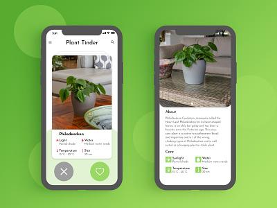 Plant Tinder - #DesignSlices UI Challenge 03 designslices