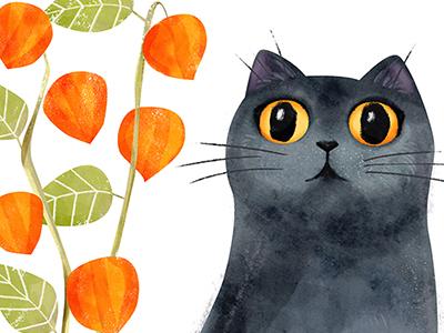 12 cat portraits - Certosino