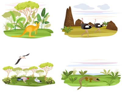 Australian animals vector design cards illustration africa australia animals birds
