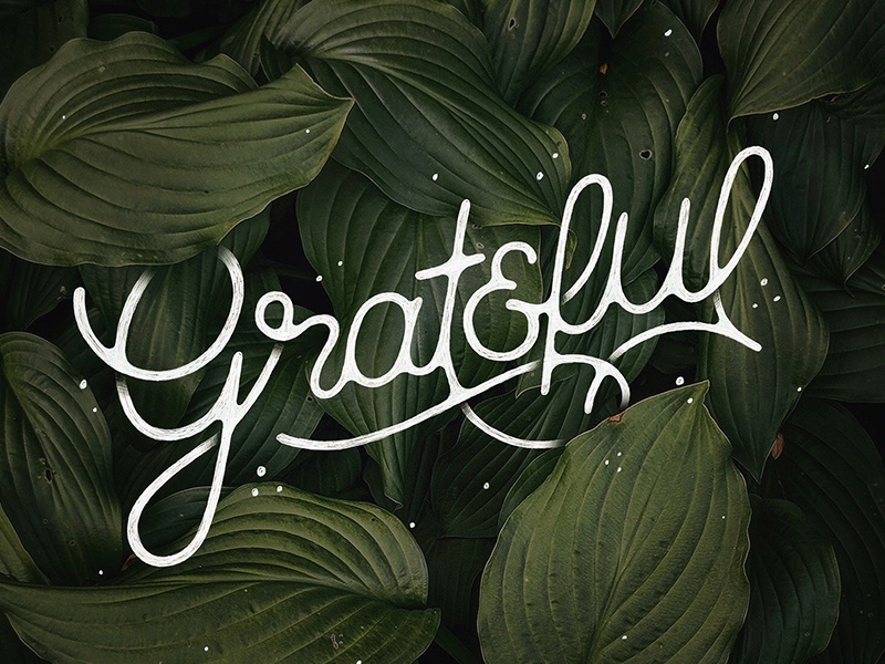 Grateful handmade illustration handlettering photo plant leaves grateful typography type font script hand lettering lettering