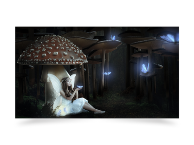 Matte Painting Magic world butterfly forest fairy magic world magic matte painting photoshop illustration design