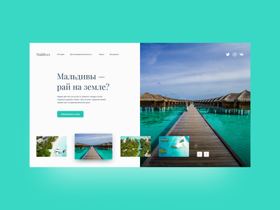 Travel agency travel webdesign website web design figma maldives landing page landingpage ux ui design