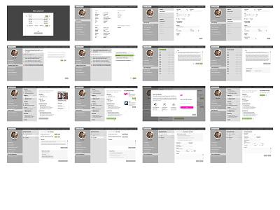 Call Center Advisor Interface database website omnigraffle web ux ui typography photoshop illustrator design