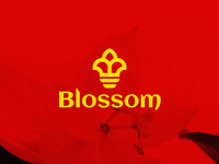 blossom Logo - Concept
