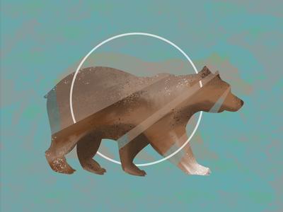 The circle of Bear