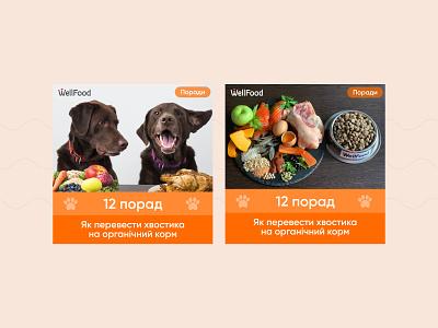 Wellfood ad creatives instagram banner banner pet food instagram orange pets dog advertisment creative