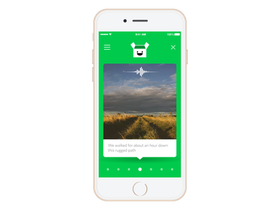 Parcel package slider green audio image app