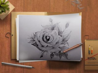 Realistic Rose Pencil Sketch