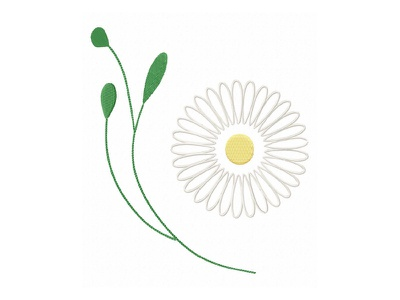 Modest Daisy Flower chamomile chamomile flower chamomile flower flower daisy daisy flower embroidery digitizing company embroidery digitizing embroidery digitizer embroidery design embroidery