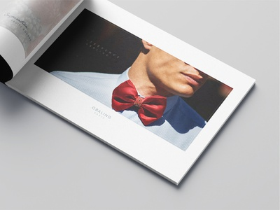 Dossier OBALING Paris embroidery editorial photography editorial design editorial papillon noeud mensstyle manfashon bowtie tie france paris minimalist design minimalist creative agency dossier
