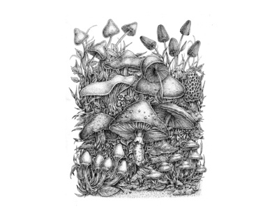 The Magic of Mushrooms - Traditional Pen and Ink
