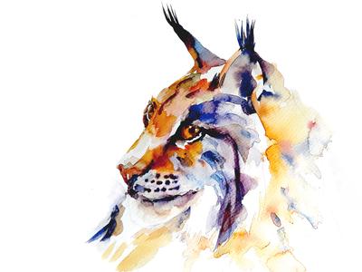 Watercolour Lynx